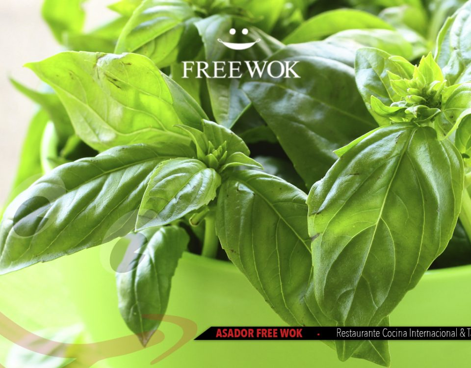 freewok-albahaca